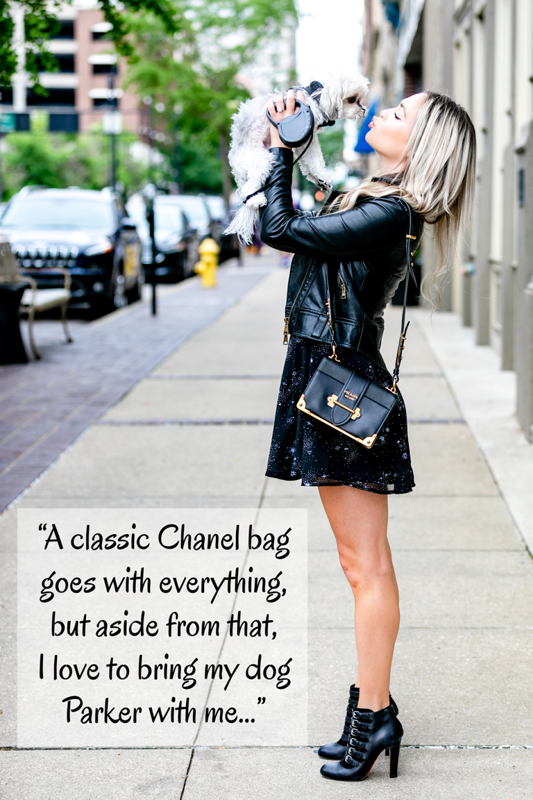 "CINCY REFINED: What is your favorite accessory? / KATE SHAW: ""A classic Chanel bag goes with everything, but aside from that, I love to bring my dog Parker with me when I am out-and-about in the city. He is a hit with everyone who meets him and the softest sidekick ever."" / Image: Amy Elisabeth Spasoff // Published:7.31.18"