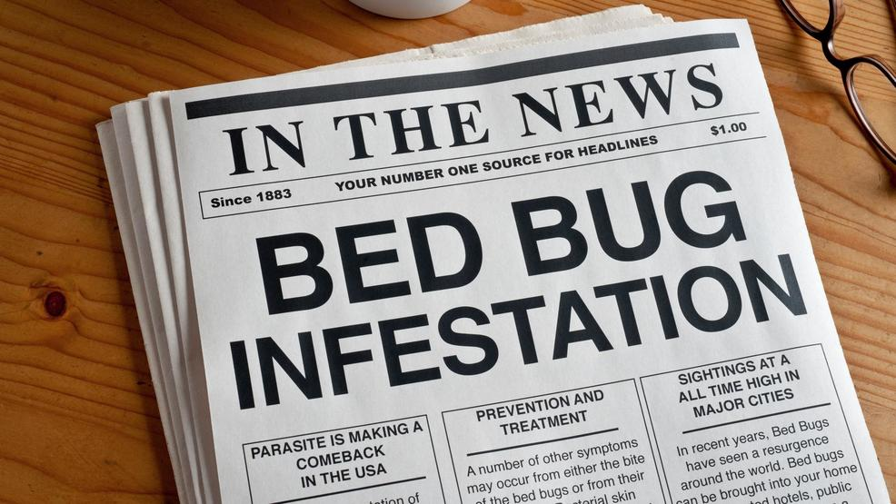 Mediterranean Inn Seattle Bed Bugs