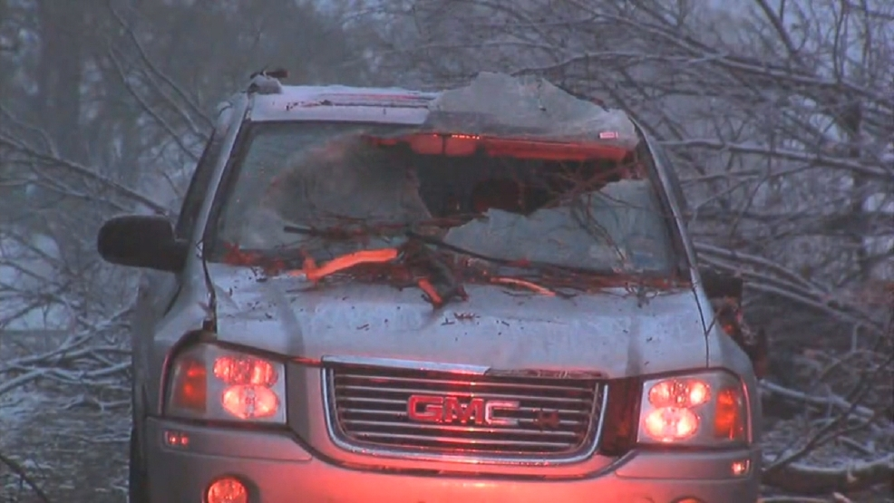 Branches Crash Through Windshield Of Car In Webster Wham