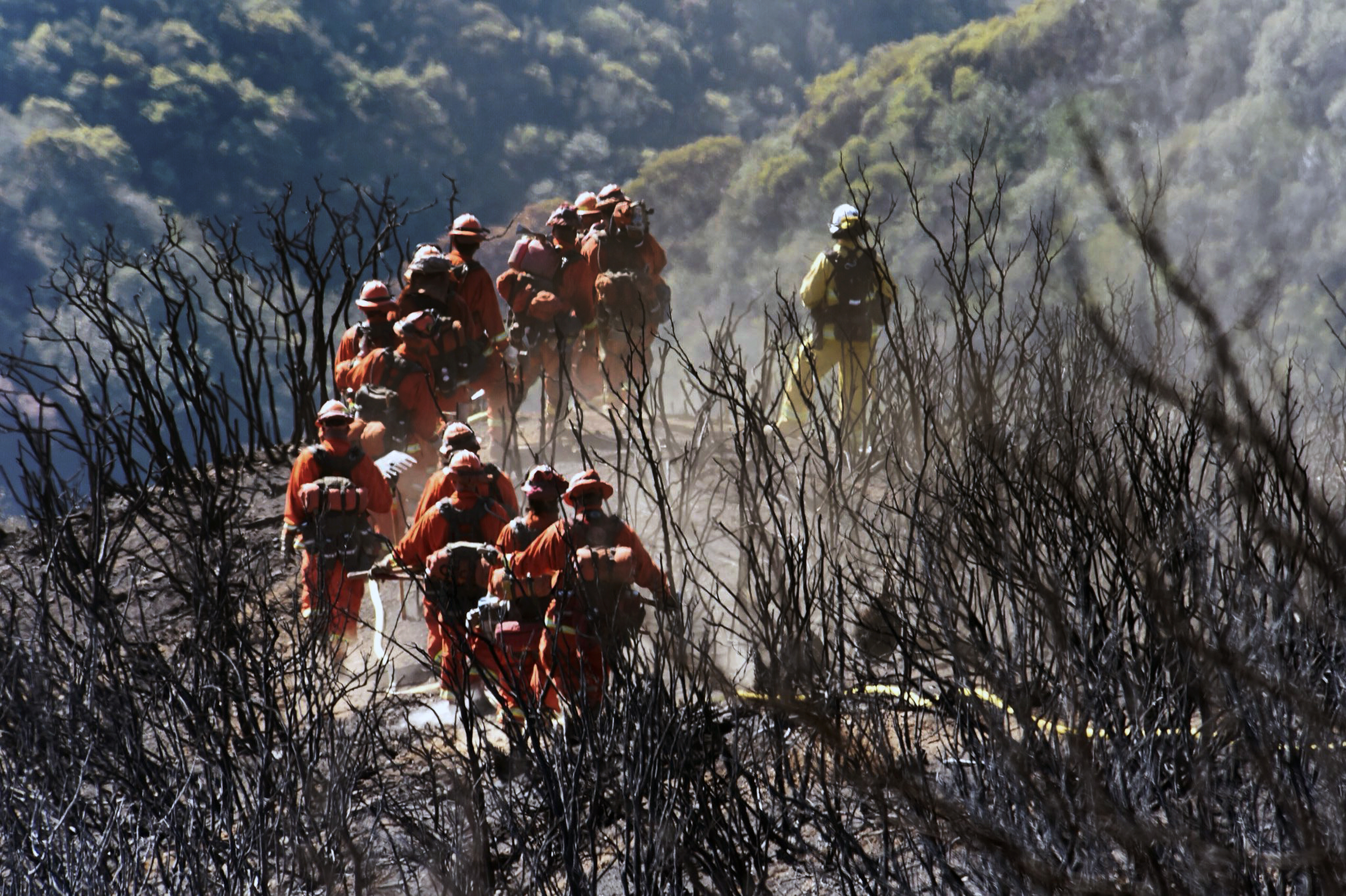 In this photo provided by the Santa Barbara County Fire Department, CAL FIRE Inmate Firefighting Hand Crew members hike through the charred landscape on their way to work east of Gibraltar Road above Montecito, Calif., Tuesday, Dec. 19, 2017. Officials estimate that the fire will grow to become the biggest in California history before full containment, expected by Jan. 7. (Mike Eliason/Santa Barbara County Fire Department via AP)
