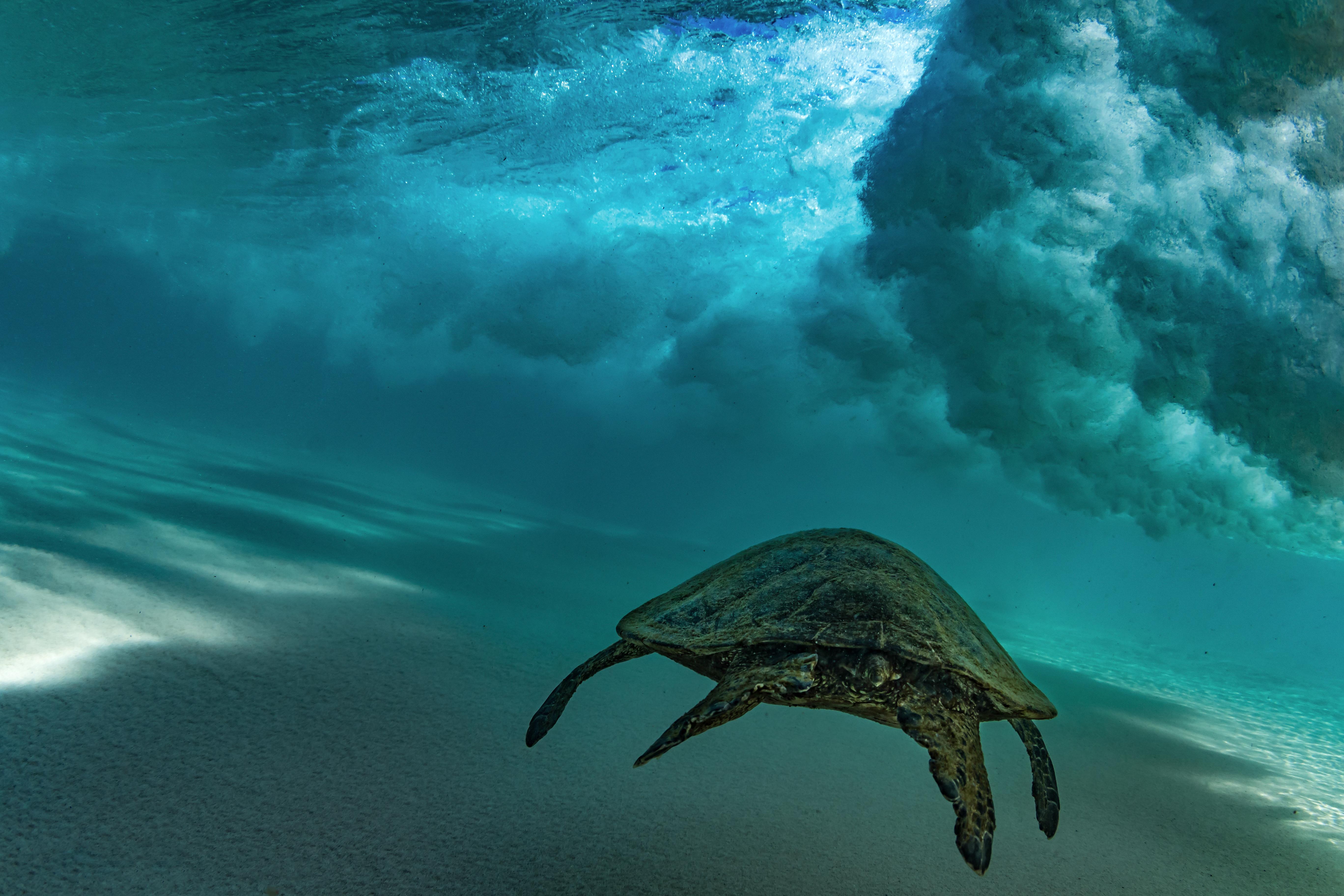 PHOTOS: Anatomy of a wave | WUCW