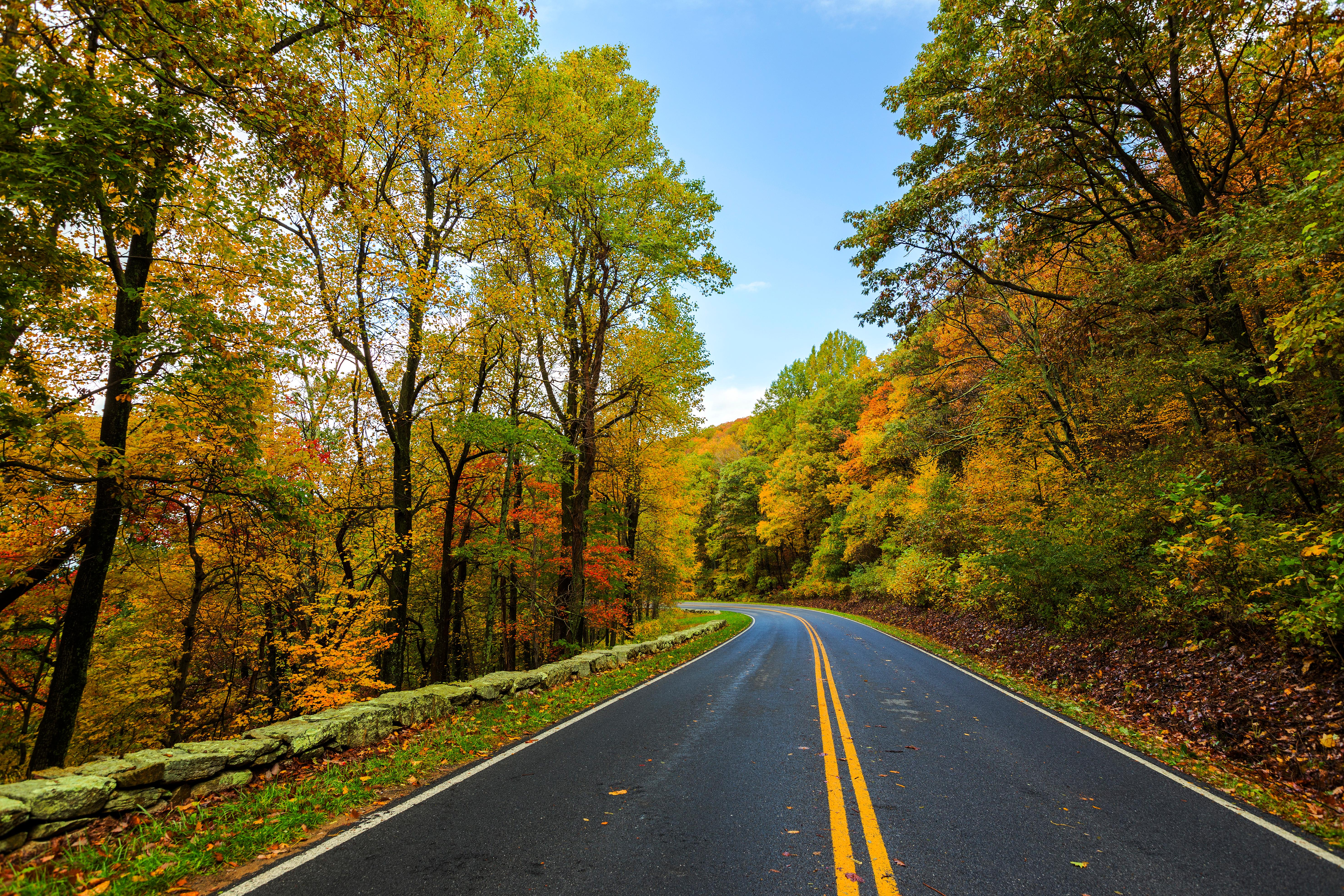 Driving along the winding Skyline Drive – which travels 105 miles along the north-south crest of the Blue Ridge Mountains – dense forests rise up on either side, the green wall punctuated by breathtaking lookouts that offer picturesque views of the valley below.{ }(File photo)