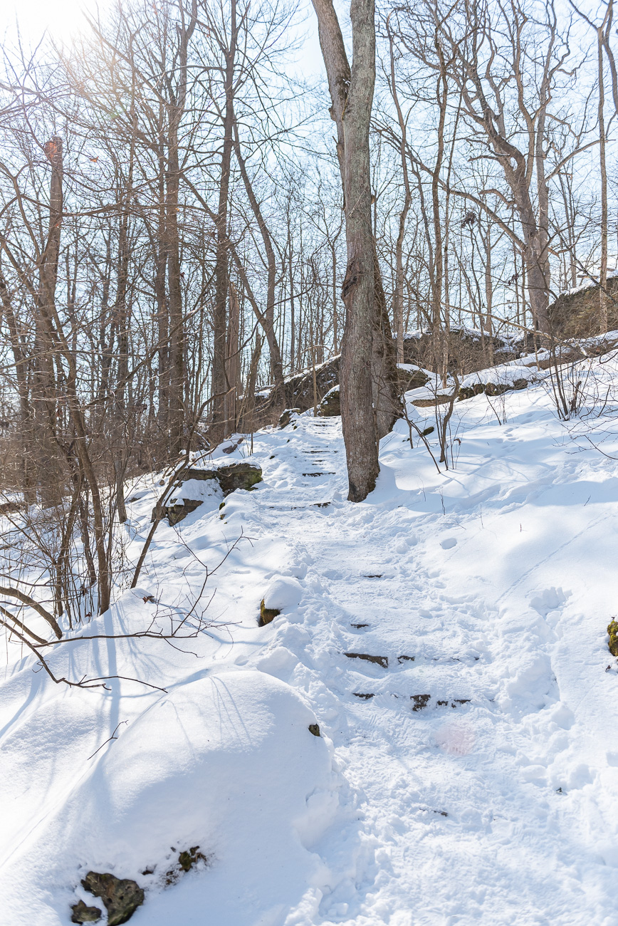 Glen Helen offers over 20 miles of public hiking trails across 1000 acres. Founded in 1929, the land was given to nearby Antioch College by Hugh Taylor Birch. The nature preserve is named for Helen Birch Bartlet, Hugh's daughter. Glen Helen was recognized as a National Natural Landmark in 1965. / Image: Mike Menke // Published: 2.22.21