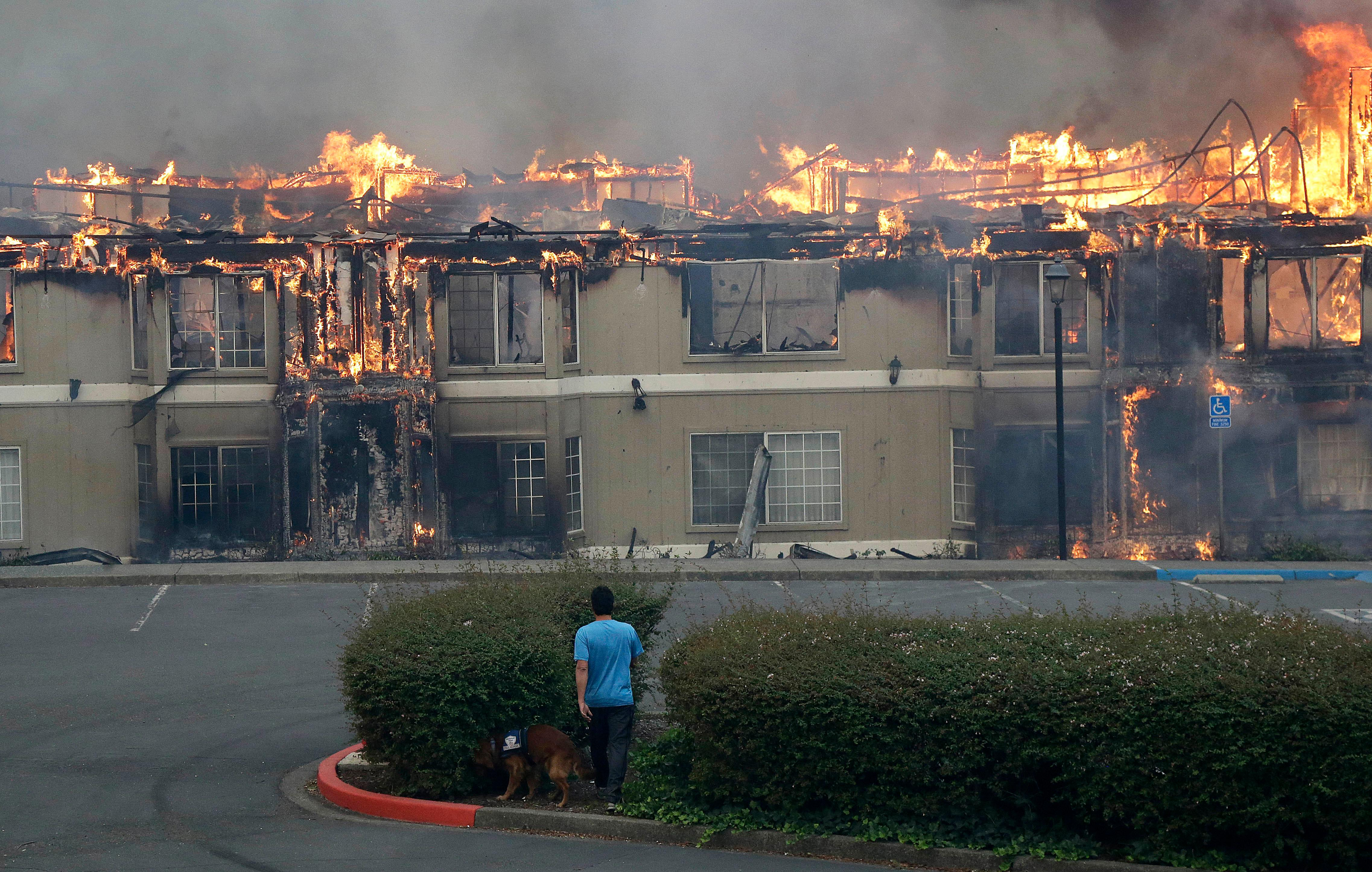 Rudy Habibe, from Puerto Rico, and his service dog Maximus walk toward a burning building at the Hilton Sonoma Wine Country hotel, where he was a guest, in Santa Rosa, Calif., Monday, Oct. 9, 2017. Wildfires whipped by powerful winds swept through Northern California sending residents on a headlong flight to safety through smoke and flames as homes burned. (AP Photo/Jeff Chiu)