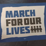 March For Our Lives: Cincinnati students join in on nationwide stand for tougher gun laws
