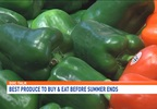 Doc Talk | Best produce to pick and eat before summer ends