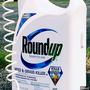 Jury backs man who claims Roundup weed killer caused cancer