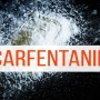 Good Question: What is the drug Carfentanil?