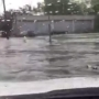 Video shows flooding on Charleston streets