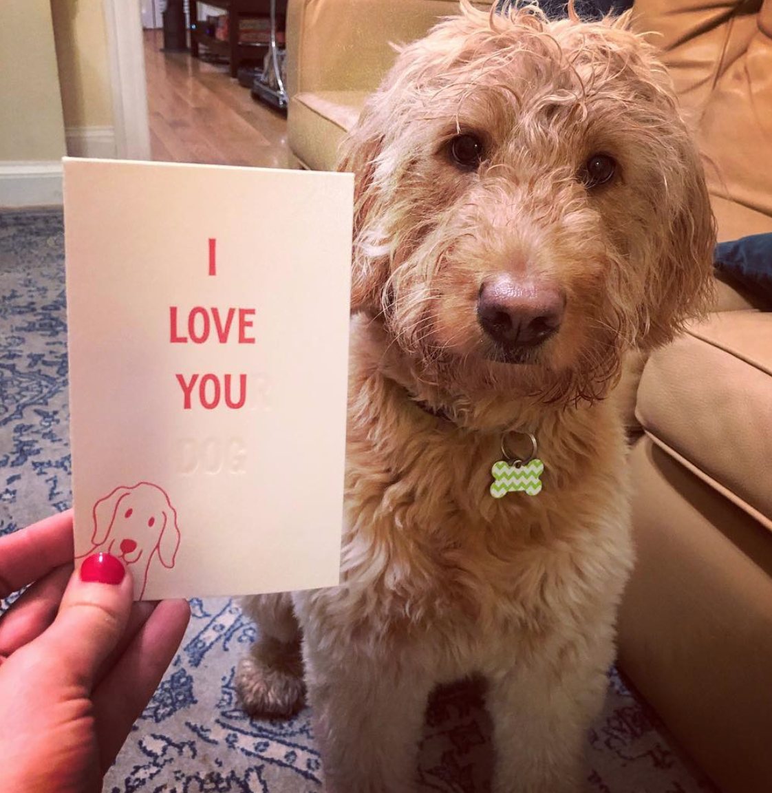 We don't need a card to prove our love! (Image via @rorygbecker)