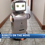 Human-like robots available for purchase in Rio Grande Valley