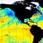 Forget the 'warm blob' -- opposite 'cool blob' taking up roost in Pacific Ocean