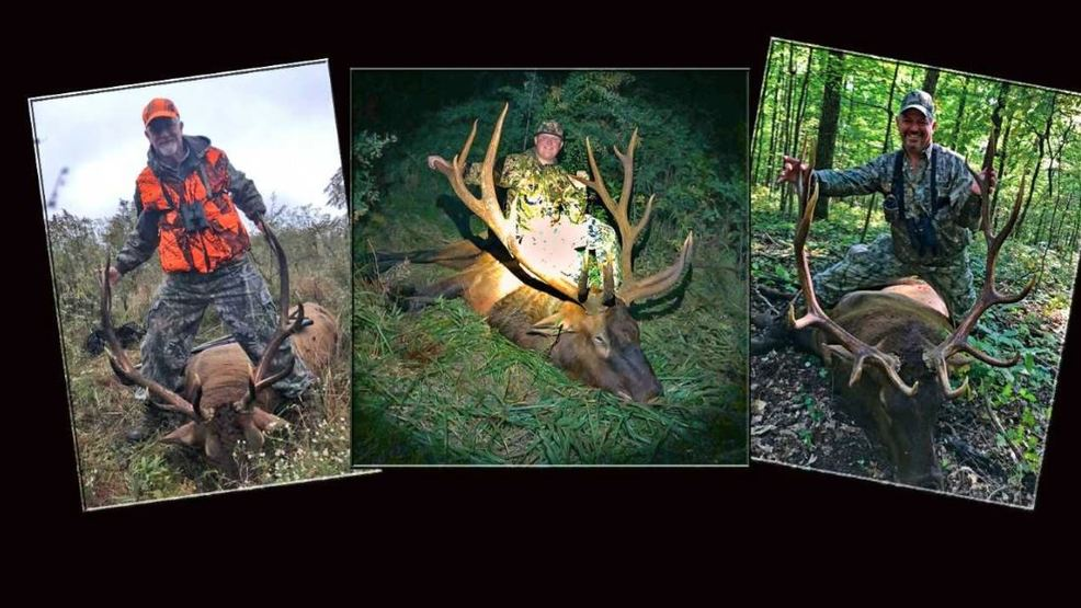 Tennessee elk hunt winners to be announced | WTVC