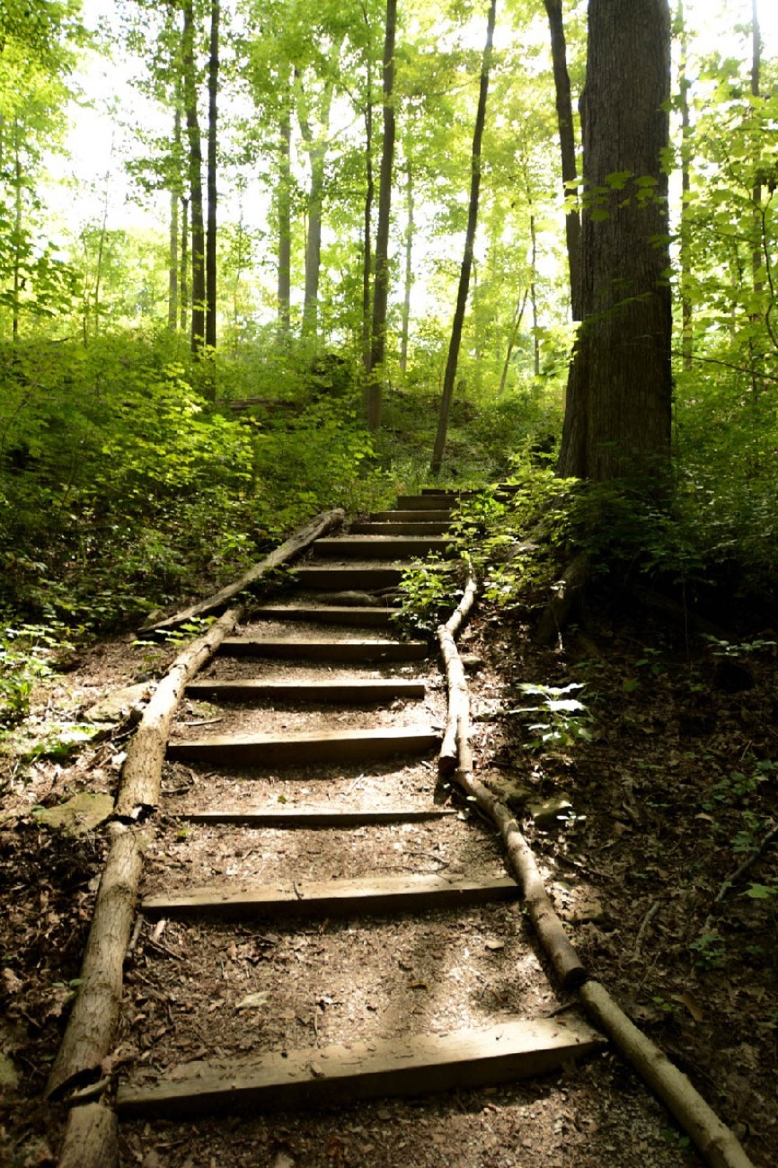 TRAILS AND HIKING: Cincinnati's parks feature 65 miles of hiking trails going through old growth forests and trundling woodlands, past shady bowers and grassy furrows, and across trundling hills and surging streams. / Image: Dan Sullivan<p></p>