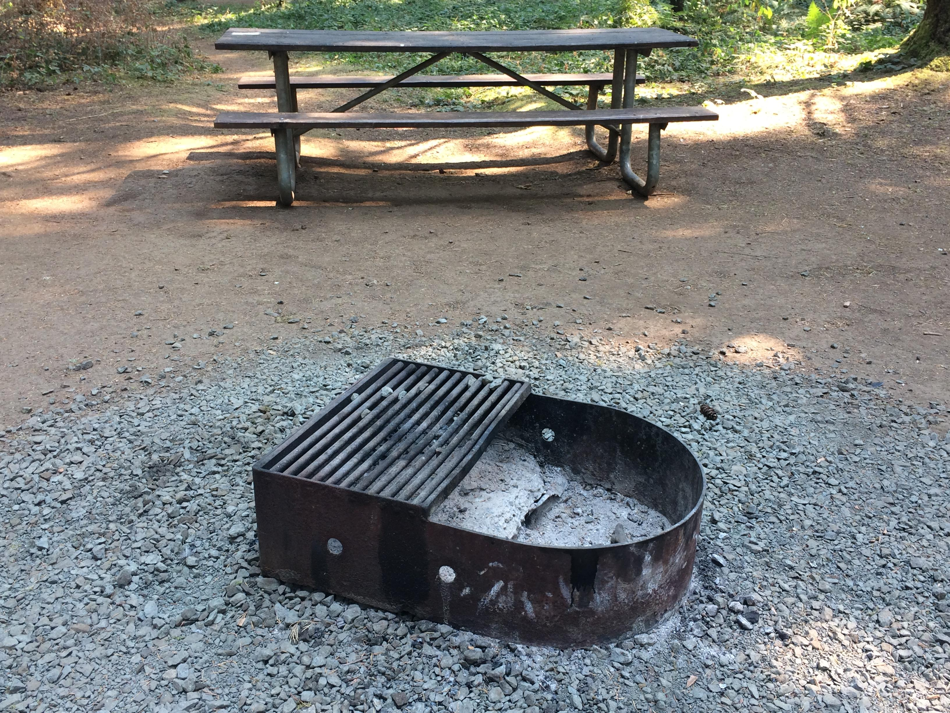 Campfires are restricted or banned on most national forest land in Western Oregon. Check with local land managers, and abide by local restrictions: firefighters already have enough on their hands without any new fires to suppress. (SBG)