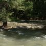 Guadalupe River reopens, Comal remains closed