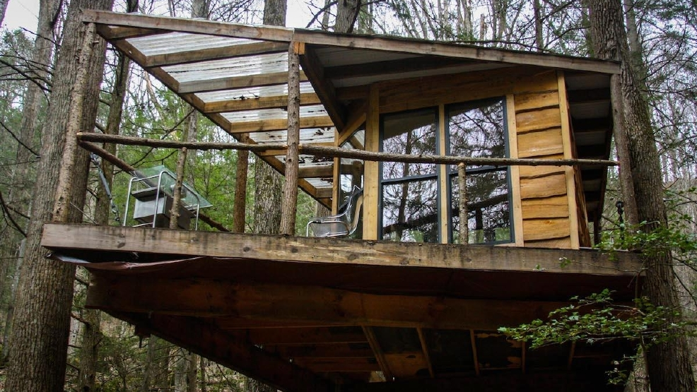 The Secret To Happiness Is Living In A Tree House ... on