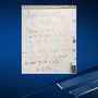 EPISD investigating message left for students of teacher charged with animal cruelty