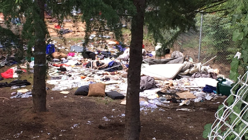 Seattle Starts Cleanup Of Homeless Camps Under I5 Between