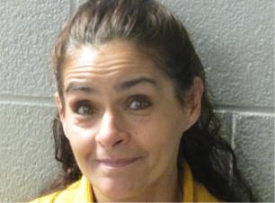 "Dena Ann Biskup White Female 45 years old 5'1"",  105 lbs Brown Hair, Hazel Eyes Frequents Deerhaven Lane, Quincy Lane & Chimney Rock Rd Wanted for 2 cts Domestic Violence Order Protection, Fail to Appear on Domestic Violence Order Protection & Fail to Appear on Probation Violation"
