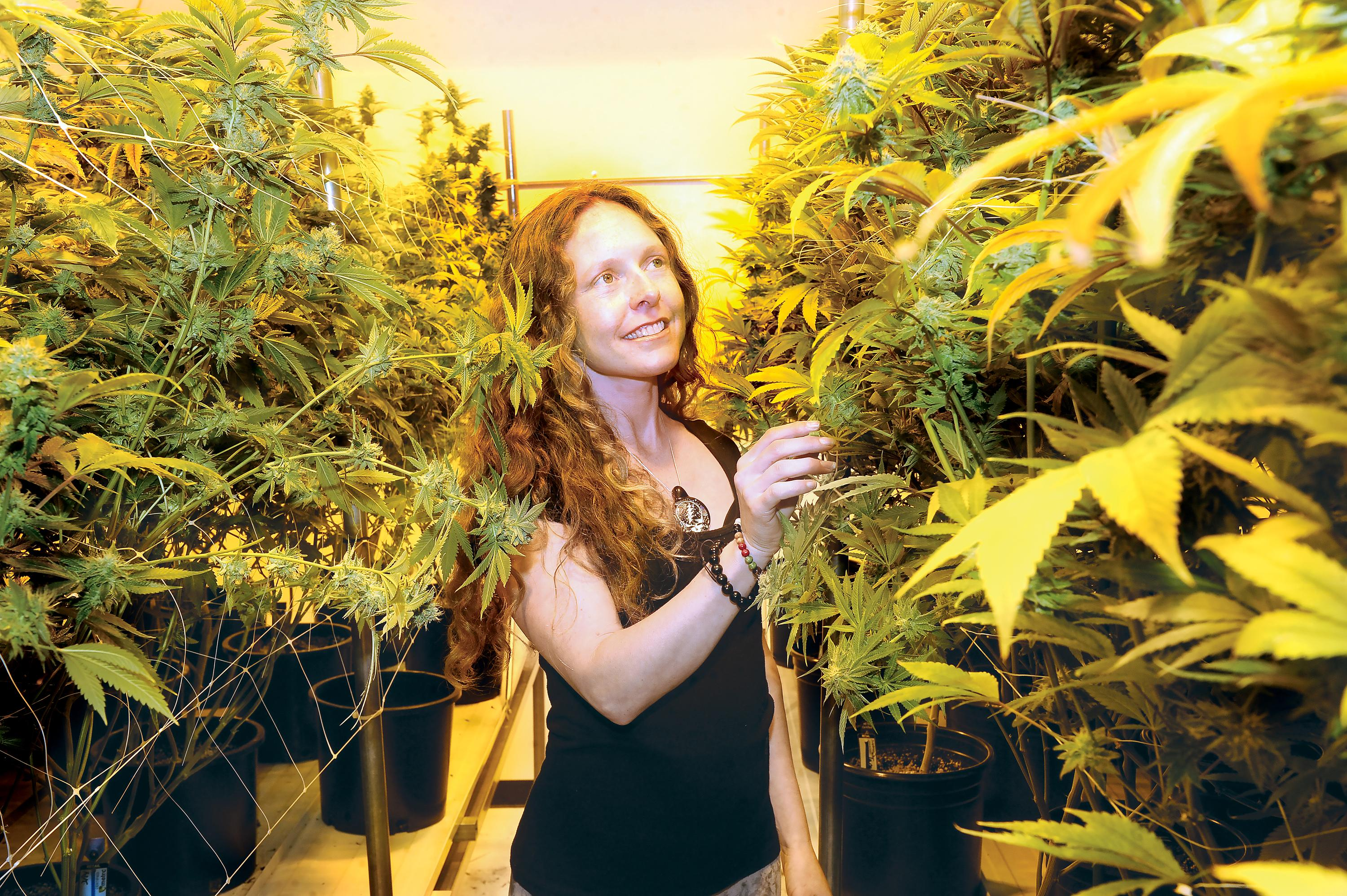 Photo by Denise Baratta <br><p>Delia Gaia Devi wears many hats in the cannabis industry, including brand ambassador for Willie's Reserve, operations coordinator for Sovereign Cannabis, a wholesale and distribution company, and chief executive of Ma'at Botanicals, which distributes CBD products nationwide. Here she is pictured in the indoor cannabis garden known as The Factory in Ashland. </p>