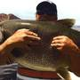 Idaho man sets Utah catch-and-release catch record