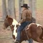 Roy Moore arrives at Alabama polling place on horseback
