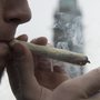 Massachusetts marijuana aficionados roll 100-foot-long joint