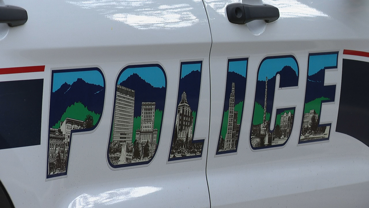 FILE - Asheville Police Department vehicle (Photo credit: WLOS staff)