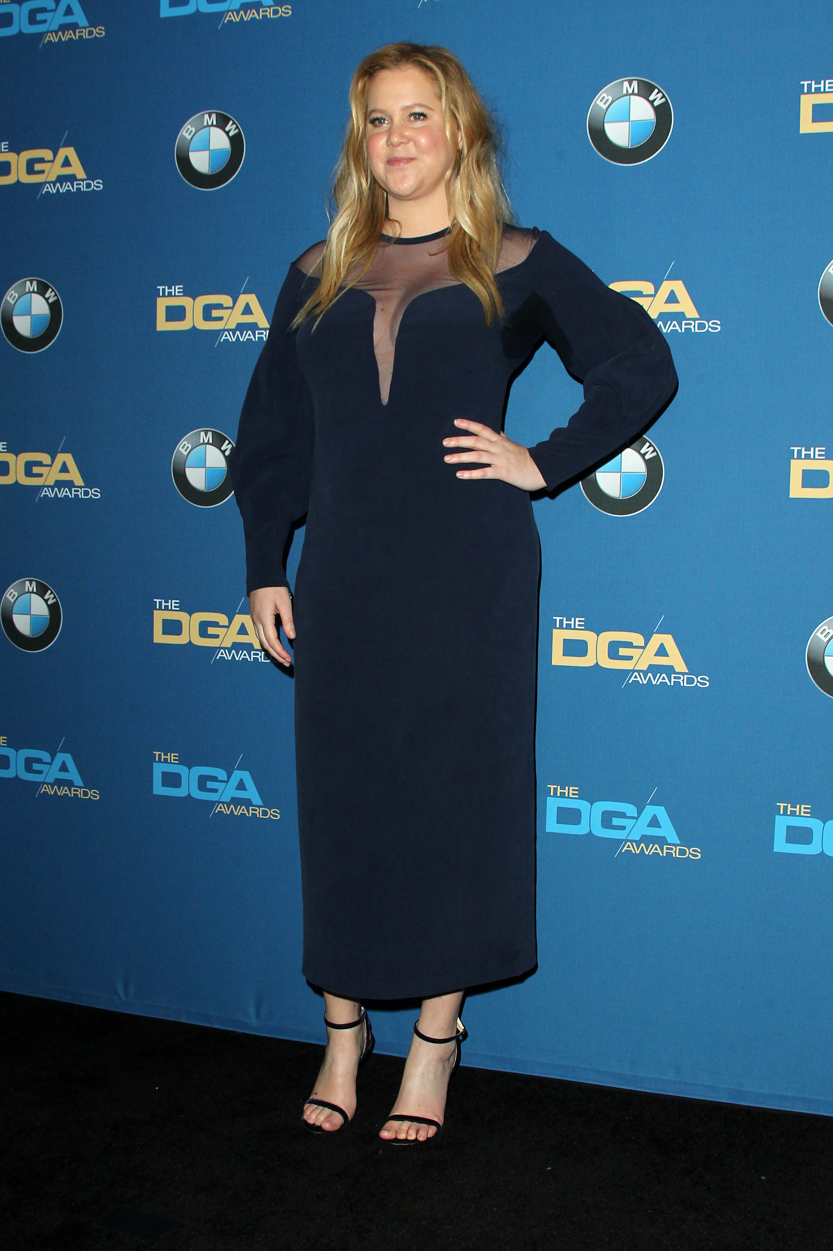 70th Annual DGA Awards 2018 Press Room held at the Beverly Hilton Hotel in Beverly Hills, California.Featuring: Amy SchumerWhere: Los Angeles, California, United StatesWhen: 04 Feb 2018Credit: Adriana M. Barraza/WENN.com