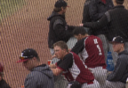 Hastings College baseball.PNG