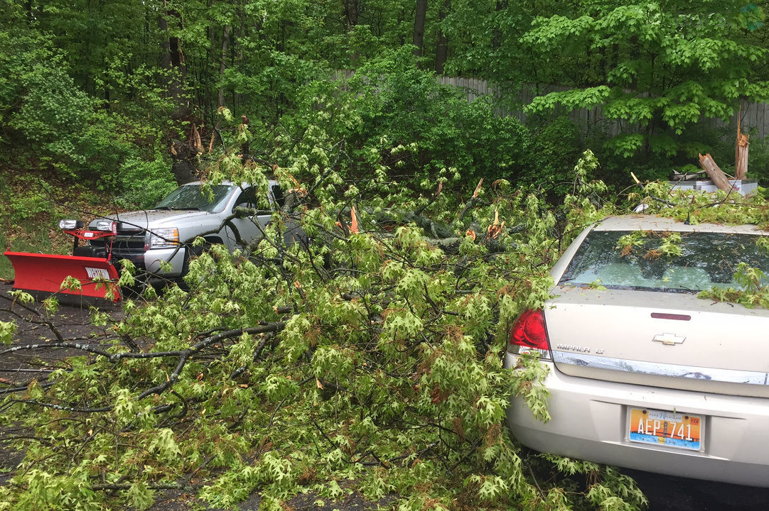 Three vehicles were damaged Monday, May 21, 2018, when a tree fell onto the lot at Stadium Motors on Stadium Drive in Kalamazoo, Michigan.  (WWMT/Matt Loughrin)