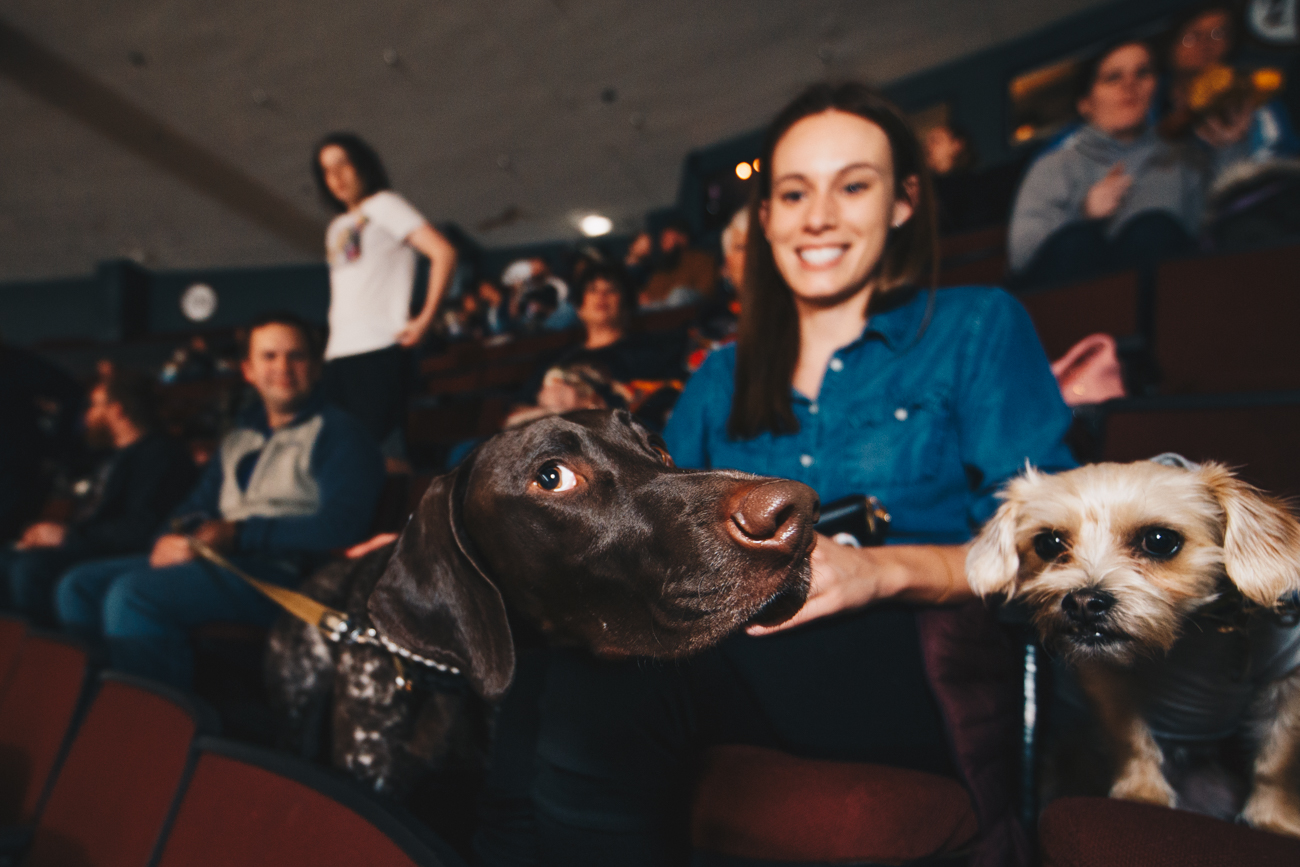 If bringing your dog to the game wasn't appealing enough, guests also got to enjoy $1 Miller High Life and Pabst Blue Ribbon beers. / Image: Catherine Viox // Published: 3.21.19