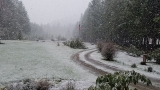 Your photos: Parts of Willamette Valley receive a dusting of snow