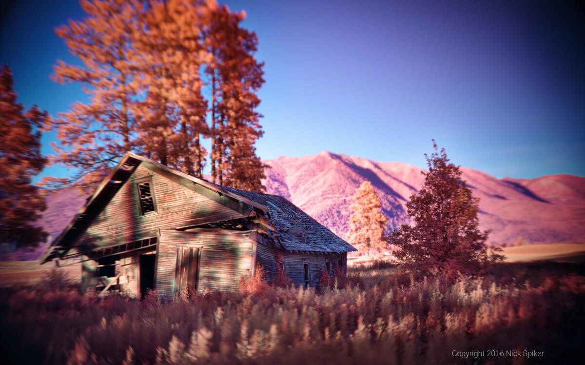 """Homestead"" (Image: Nick Spiker)"