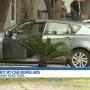 Homeowner shot after confronting would-be car thieves