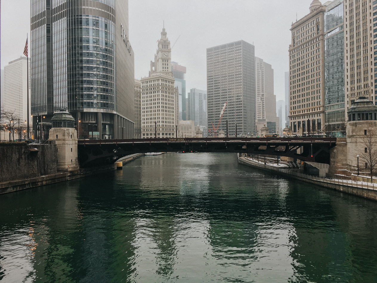 The remnants of the Chicago River being dyed green for St. Patrick's Day / Image: Brianna Long // Published: 3.19.17