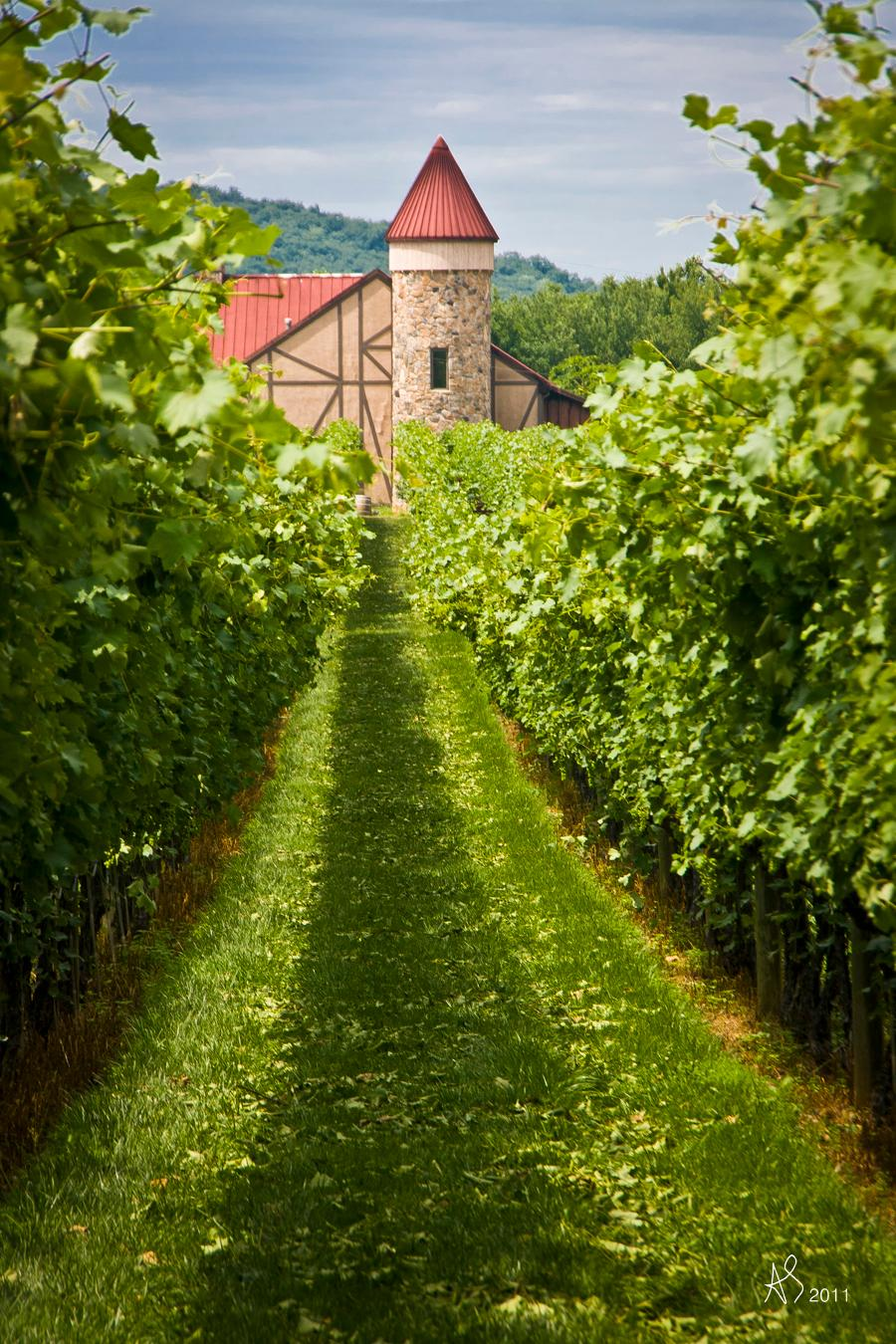 Wine buffs will want to spend any extra time in C-ville visiting its premier vineyard, Barboursville, which is known for making some of the best wines coming out of Virginia. The winery also boasts a restaurant and inn, if you're looking for a one-stop shop.(Image: Alex Streyer/ Visit Charlottesville)