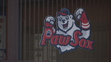 PawSox says it has concerns over revised stadium proposal