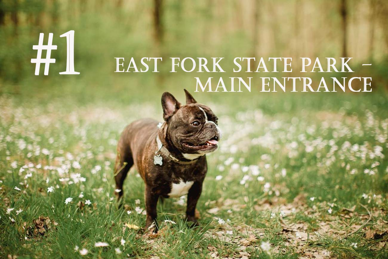 As one of the biggest parks in Ohio, East Fork State Park offers lots of room to roam. The park features the 2,160-acre William H. Harsha Lake with ample water recreation activities, camping, miles of hiking, and pet-friendly campsites. ADDRESS: 3294 Elklick Road, Bethel, OH (45106) / Background image courtesy of Instagram user @onquephotography  via Discover Clermont // Published: 11.28.20
