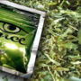 Nebraska mother, son sentenced for synthetic marijuana sales