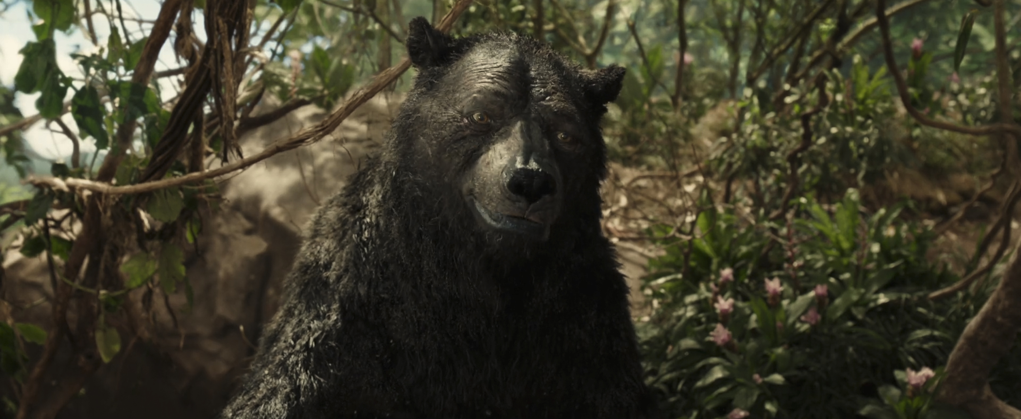 "Baloo in the Netflix film ""Mowgli: Legend of the Jungle"""
